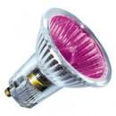 Лампа галогенная BLV POPLINE 50W 35° 240V GU10 пурпурный